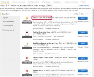 Amazon Linux は 2014.03 になっている