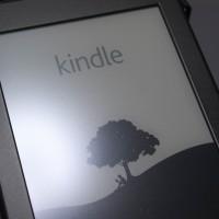 Kindle本50%ポイント還元フェア(1/22まで)