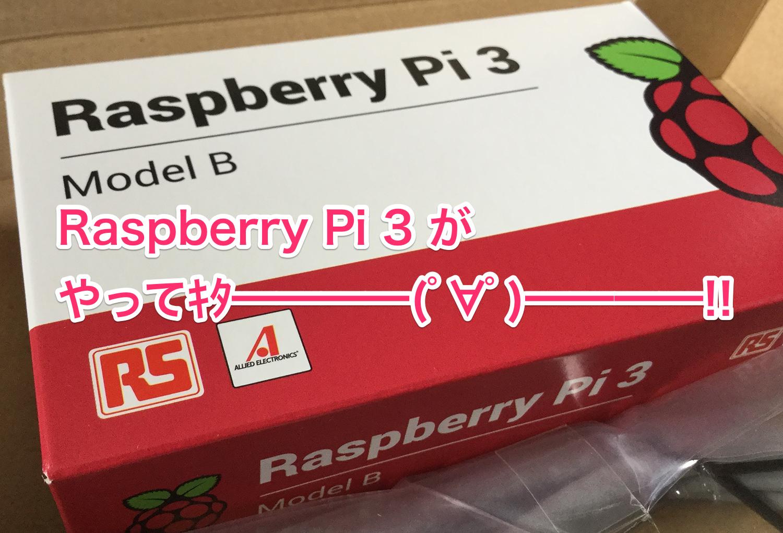 Raspberry Piがやってきた